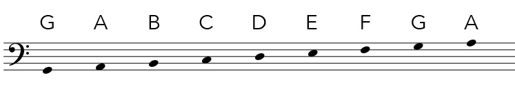 Bass clef notes in the staff